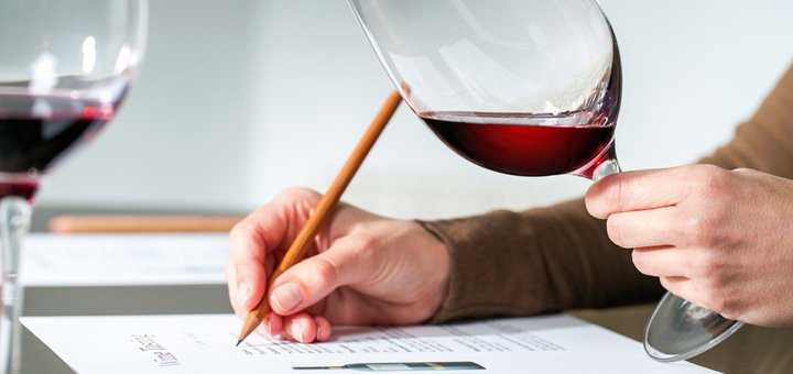 Вечерний винный курс от Международной Винной Академии!