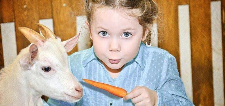 Скидка 50% на 2 билета на увлекательную выставку животных в «Трогательном зоопарке»