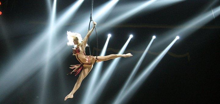 Невероятное предложение! Билеты в цирк «Кобзов» в комплексе с выставкой