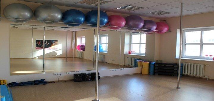 До 3 месяцев занятий стрип-пластикой или обучение «PRIVATE Dance» в «ART STUDIO 3/15»