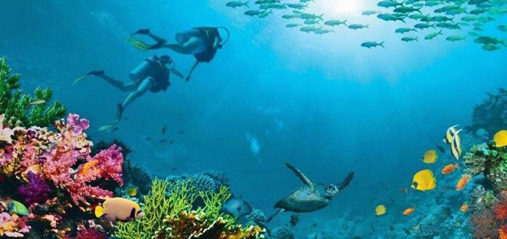 Скидка 8% на горящие туры в Египет от агентства «Заманчивые туры»