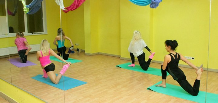 До 16 занятий Pole-Dance в школе танца и растяжки «PaPillon»