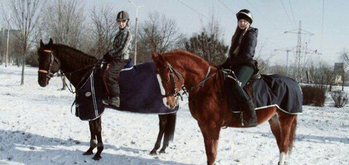 Скидка 25% на ассортимент услуг в конном клубе «Асвашани»