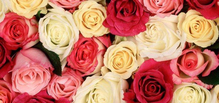 Скидка 35% на все букеты от сервиса доставки цветов «Roses»