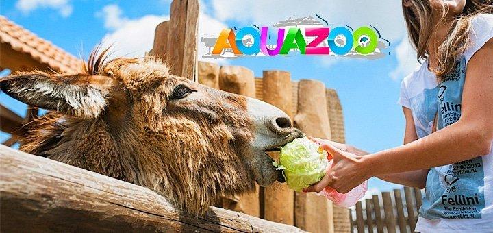 Незабываемые впечатления! Скидка до 52% на входные билеты в зоопарк «AQUAZOO - Петрополь»!