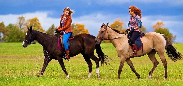 Скидка до 65% на прогулки на лошадях или занятия по обучению верховой езде в конюшне «Идиллия»