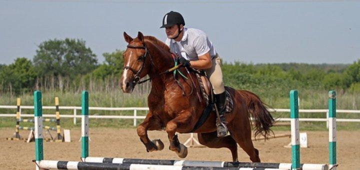 До 3 уроков верховой езды от конного клуба «Horse Yard»