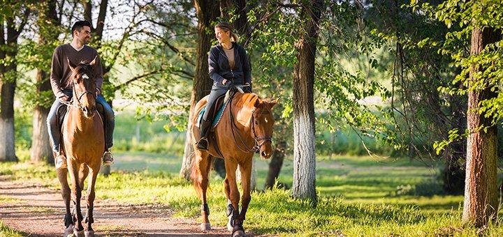 Скидка до 40% на прогулку на лошади или пони от конюшни «Олимп»