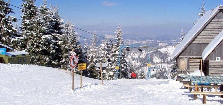 От 4 дней на Рождество и новогодние праздники с питанием в домах из бруса «Drin-Lux» в Славском
