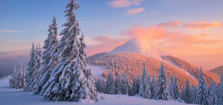 От 4 дней горнолыжного отдыха с сауной и питанием в экологичных домах в «Drin-Lux» в Славском