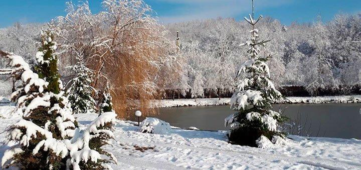 От 3 дней зимнего отдыха с питанием и пакетом услуг в SPA-отеле «Астур» в Закарпатье