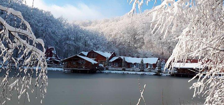 5 дней на католическое Рождество с праздничным застольем в SPA-отеле «Астур» на Закарпатье