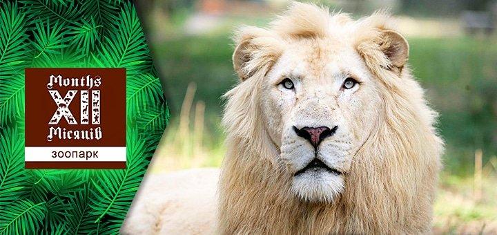 Новый сезон развлечений в зоопарке«XII Месяцев»: цирк шапито и представление с участием животных!