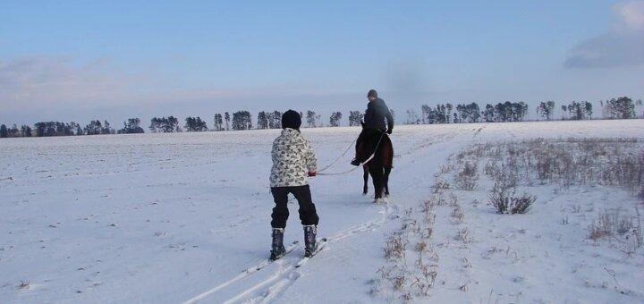 Скидка до 53% на занятия скиджорингом в конном клубе «Идиллия»