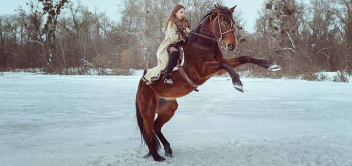 Скидка до 63% на романтическую фотосессию для пары с лошадьми в конном клубе «Кураж»