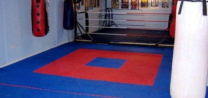 12 занятий по всем видам единоборств в спортивном клубе «Атлет»