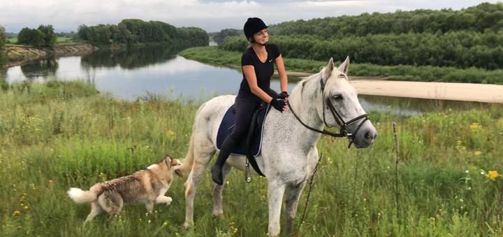Скидка до 50% на конные прогулки в эко-комплексе «Старая пристань» в Черниговской области.