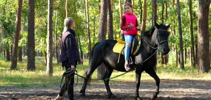 Скидка до 44% на прогулку на лошади в конном клубе «Мечта»