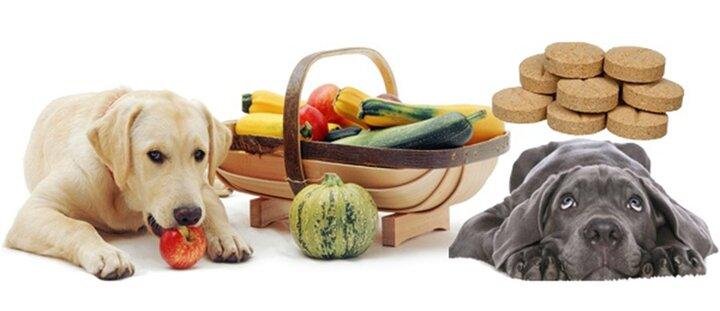 Скидка 25% на витамины для собак!
