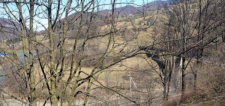 От 2 дней отдыха с питанием в отеле «Лісова казка» в Закарпатье
