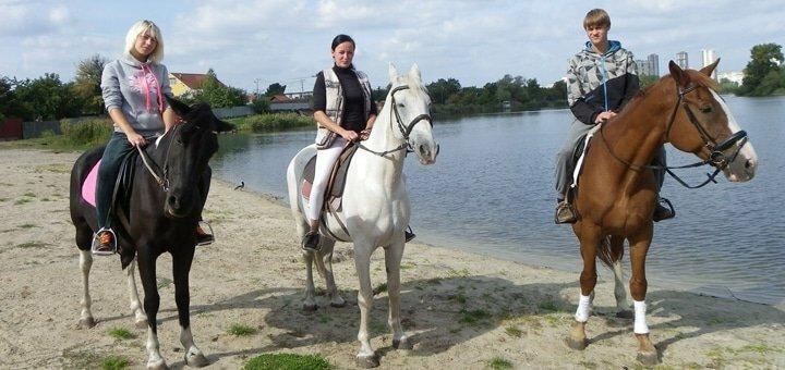 Скидка 37% на часовую прогулку на лошади для взрослого или на пони для ребенка в «Агата»