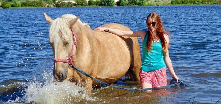 Скидка до 41% на прогулки на лошадях или пони от конного двора «ЦарSky» в « Sobi Club»