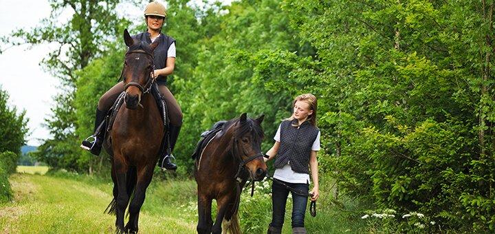 Скидка до 42% на прогулку на лошади с обучением и сопровождением тренера от «ЦарSky»