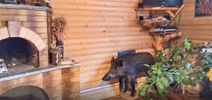 От 3 дней отдыха осенью с питанием в усадьбе «Юрта» в Татарове