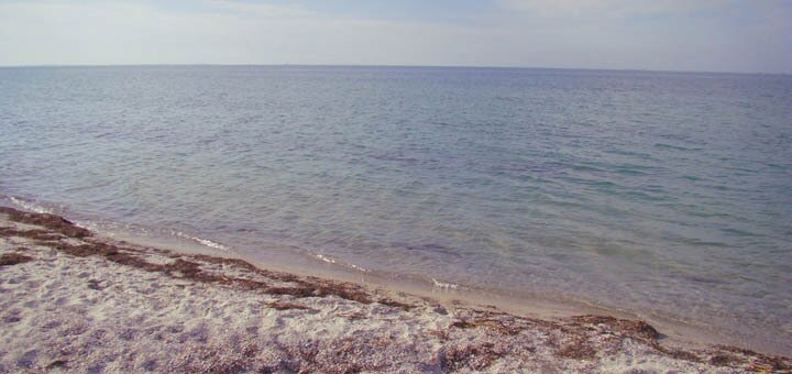 От 3 дней отдыха в августе с завтраками в комплексе «Black Sea» в 10 метрах от моря в Скадовске