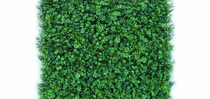 Скидка 5% на декоративное зеленое покрытие Фитостена Оазис от «Стиль Вкуса»