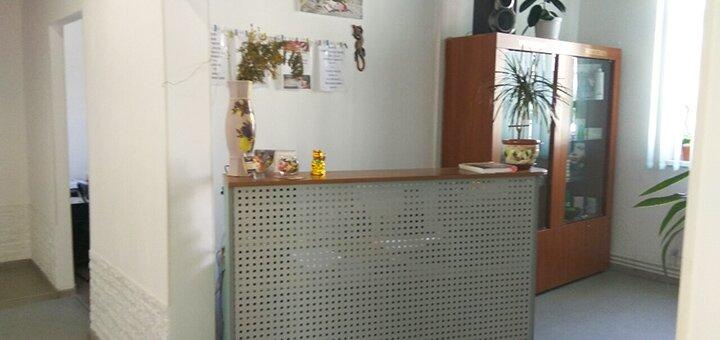 Химический пилинг лица в салоне красоты «Аура» на Бажана