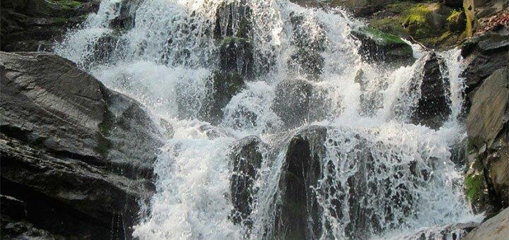 Тур «Новый год 2020 у подножья гор Закарпатья» от «Miracle Travels»