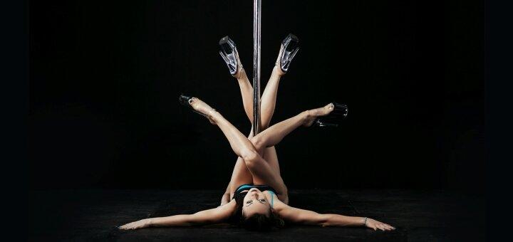 До 8 занятий Pole Dance и стретчингом в студии «Art Cats»