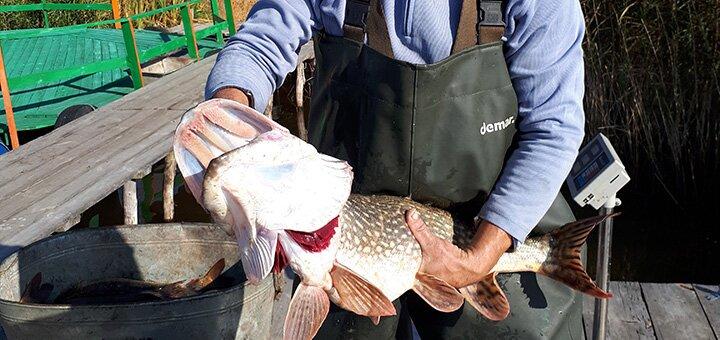 Зимняя рыбалка для двоих на озере Глория в рыбоводческом хозяйстве «Gloriya Fishing»