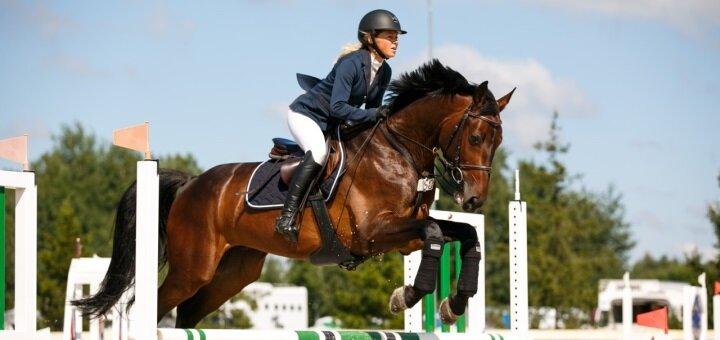 Скидка до 50% на прокат лошадей с тренером в конном клубе «IloveMyHorse»