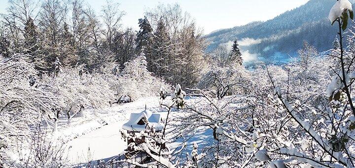 От 3 дней отдыха зимой с дополнительным пакетом услуг в комплексе «Байка» в Карпатах