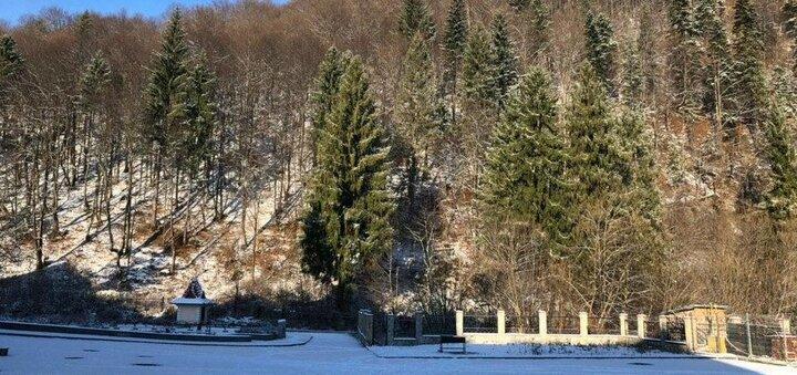 Горящий Тур в Карпаты на 8 марта с «Йога Тревел»