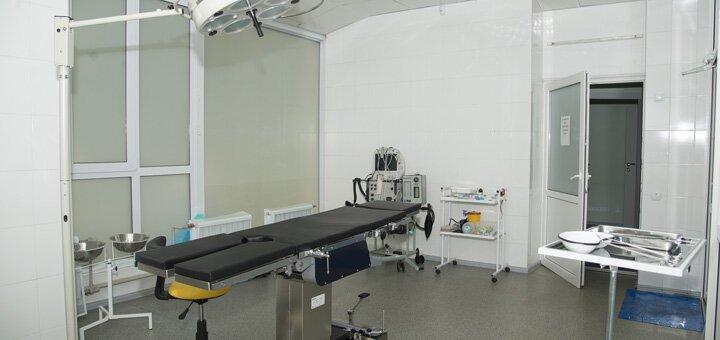 До 5 сеансов озонотерапии живота в многопрофильной клинике «Доступный доктор»