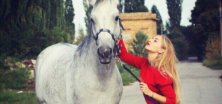 Скидка до 50% на прокат лошадей и услуги тренера в конном клубе «IloveMyHorse»