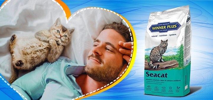 Скидка и бесплатная доставка супер-премиум кормов для котов «WINNER PLUS»