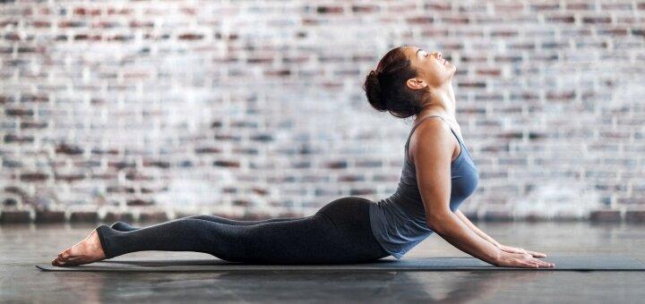 До 16 онлайн-занятий стретчингом «Stretching adult» в школе «Lysokon Dance Studio»