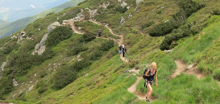Эко-тур в Карпаты, прогулки на джипах в горы и сыро-винный день от «Buli-Tour»