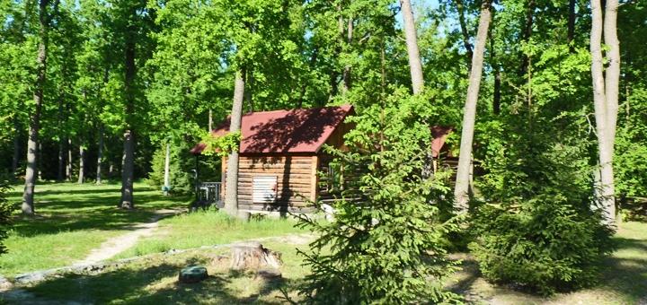 От 5 дней летом на базе отдыха «Лесная сказка» над Росью под Киевом