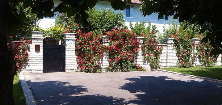 От 3 дней отдыха в июне в отеле «Южный Дворик» в Одессе на Черном море