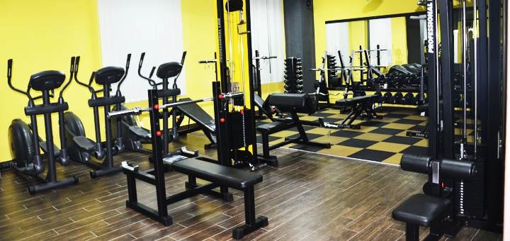 До 12 месяцев посещения тренажерного зала в спортивном клубе «Tiger Fitness»