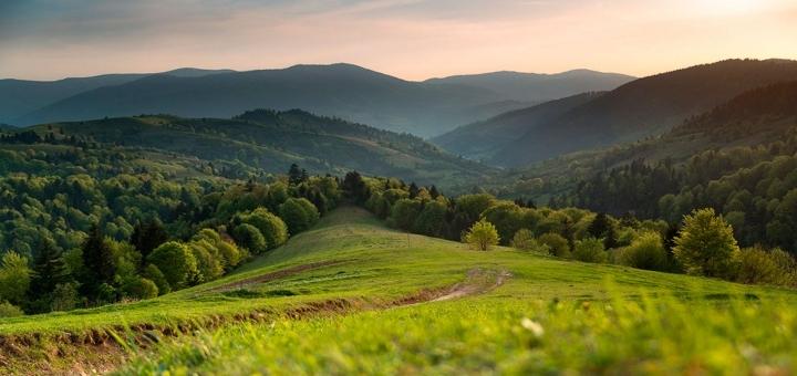 Скидка 30% на йога тур  «Light Yoga Tour in Carpathian»