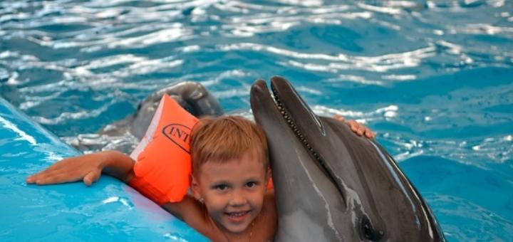 Скидка 50% на дневное представление в дельфинарии «Немо» в Коблево