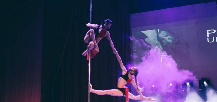 До 32 занятий Pole Dance, pole exotic и стретчингом в школе танца «Dance Appeal»