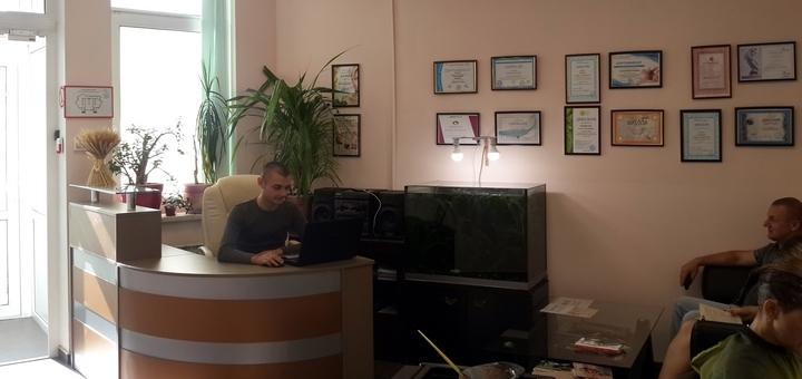 До 7 сеансов классического массажа спины и швз в массажном кабинете «Гармония-бьюти»