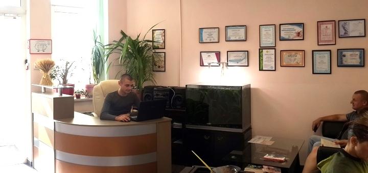 До 7 сеансов антицеллюлитного массажа в массажном кабинете «Гармония-бьюти»